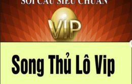 Khái niệm song thủ lô VIP
